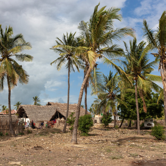 """""""Traditional village with thatched roofs houses, Lamu County, Siyu, Kenya"""" stock image"""