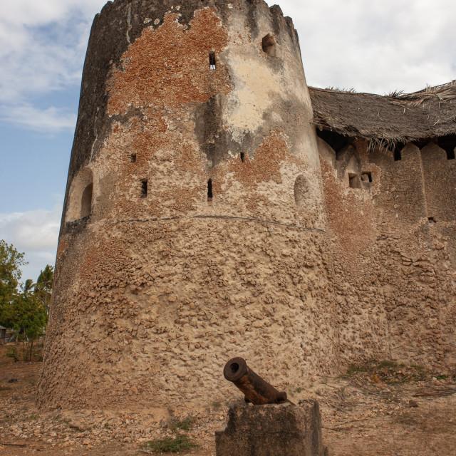 """The old fort built by Bwana Mataka, Lamu County, Siyu, Kenya"" stock image"
