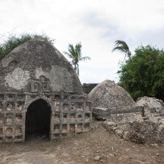 """Old muslim graves, Lamu County, Pate Island, Kenya"" stock image"