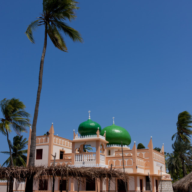 """Mosque with palm trees, Lamu County, Pate Island, Kenya"" stock image"