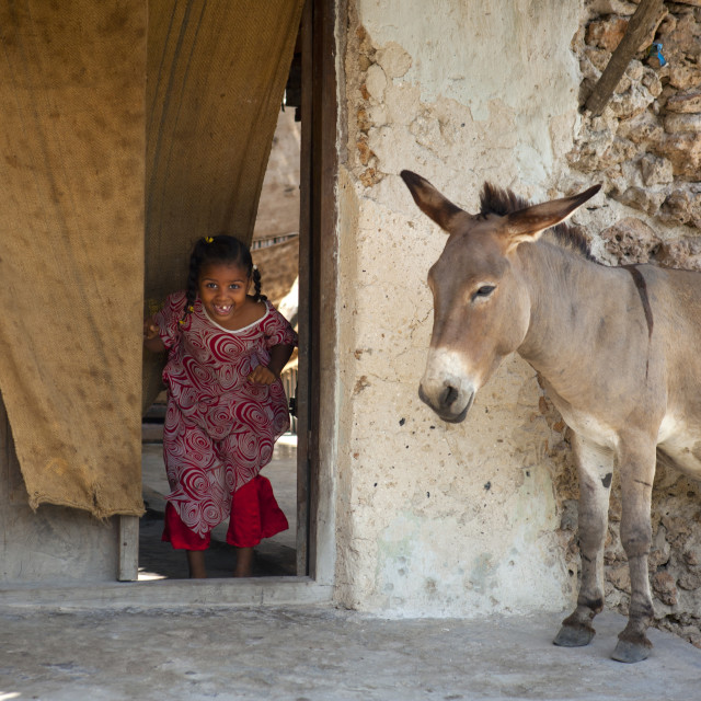 """""""Little girl coming out a house and discovering a donkey, Lamu County, Pate..."""" stock image"""
