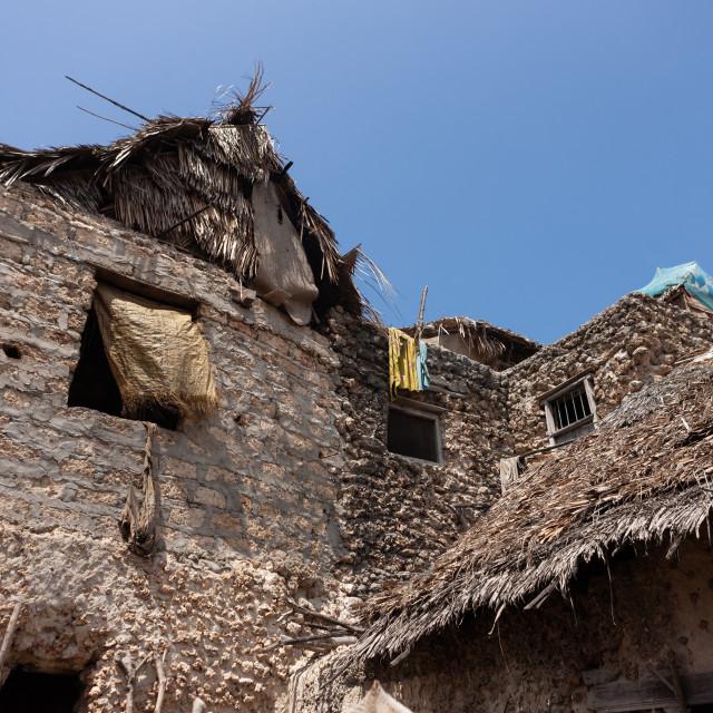 """Traditional swahili houses, Lamu County, Siyu, Kenya"" stock image"