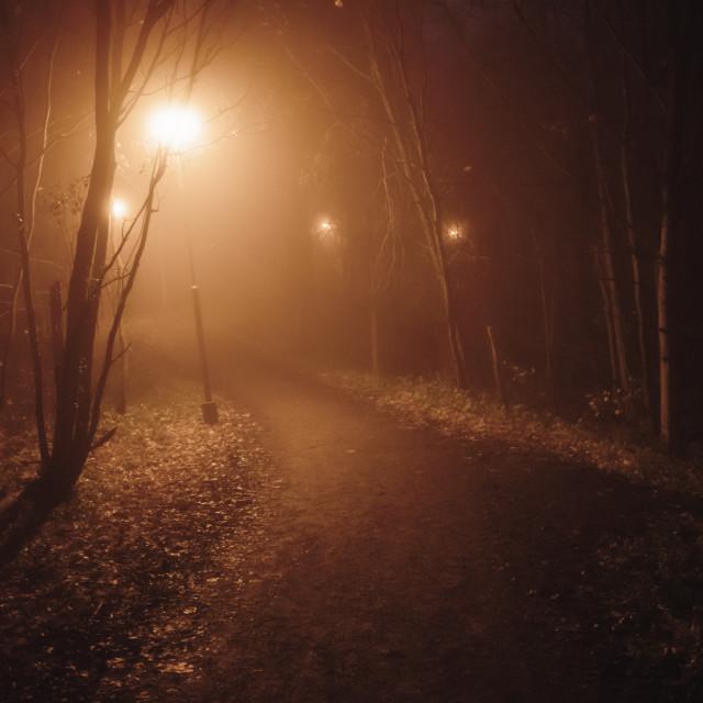"""Night Walk At Pispala XII (Path)"" stock image"