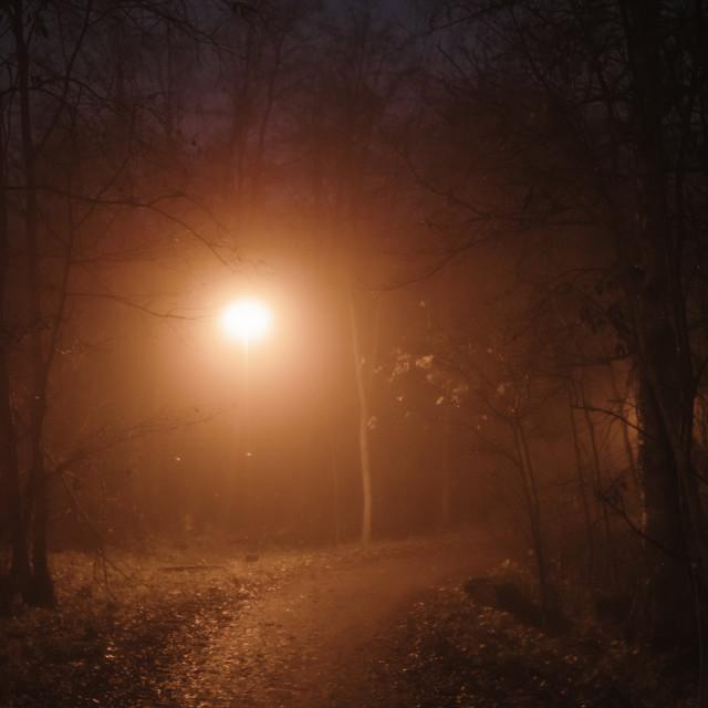 """Night Walk At Pispala XIII (Path)"" stock image"