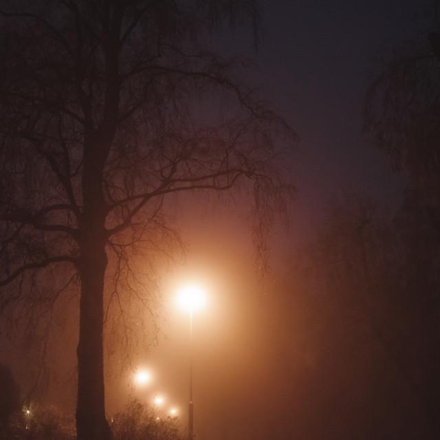 """Night Walk At Pispala XV (Street Lights)"" stock image"