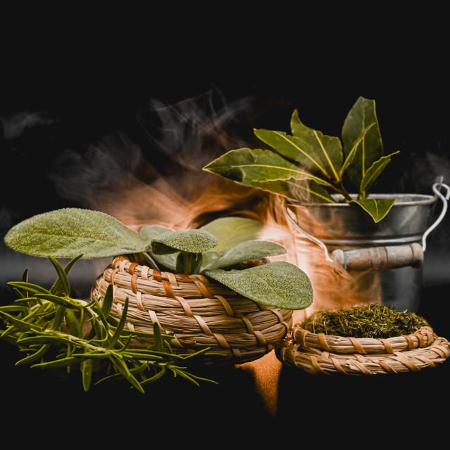 """A conceptual shot of herbs"" stock image"