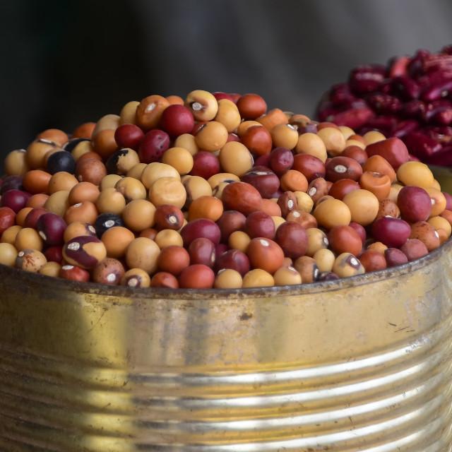 """Bambara groundnuts"" stock image"
