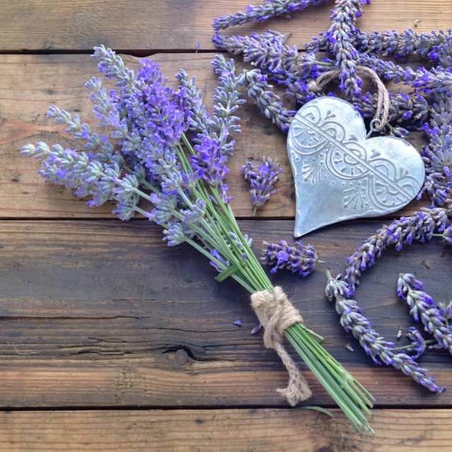 """""""decorative metal heart among flowers of lavender on wooden background"""" stock image"""