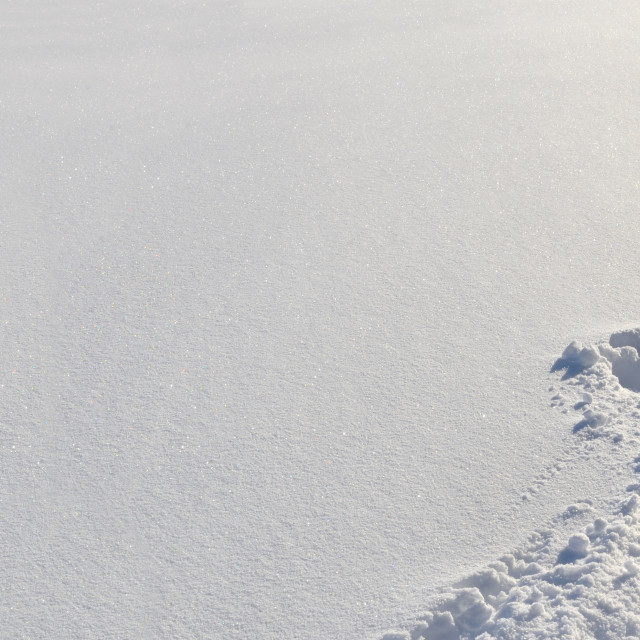 """""""tracks in fresh snow in panoramic view"""" stock image"""