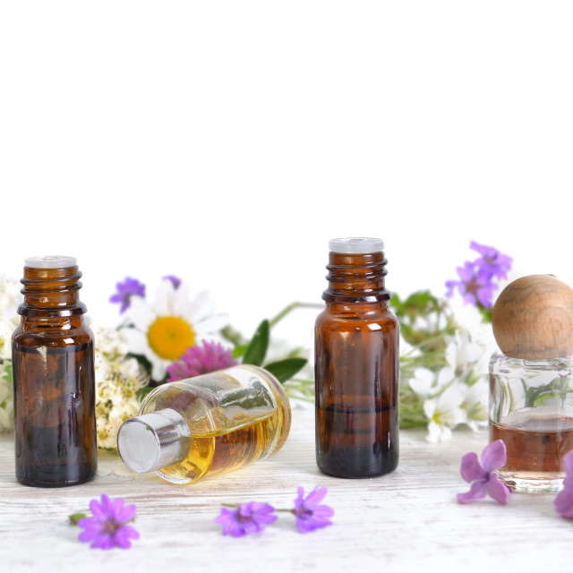"""""""bottles of essential oil and colorful petals of flowers on white table in panoramic size"""" stock image"""