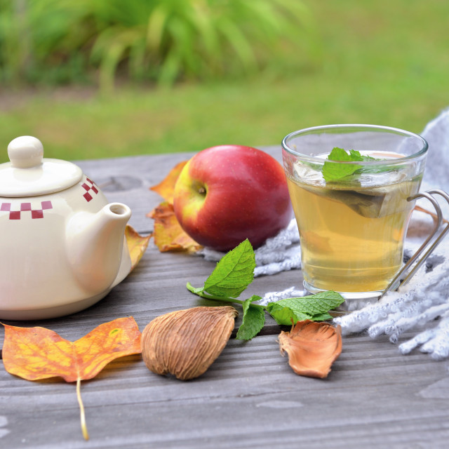 """""""cup of tea on a wooden table in garden with teapot among autumnal leaf and red apple on wool scarf"""" stock image"""
