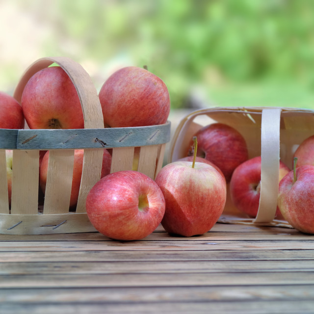 """""""group of red apples in little baskets on a wooden table in garde"""" stock image"""
