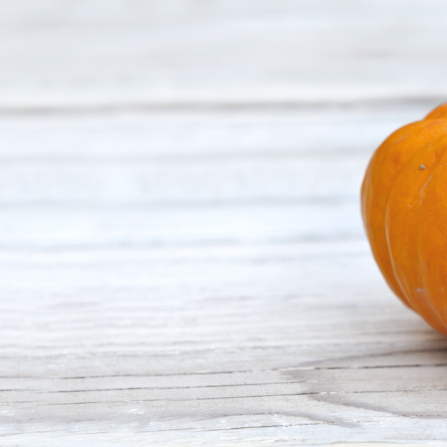 """""""little squash put on a white wooden table with copy space in the right"""" stock image"""