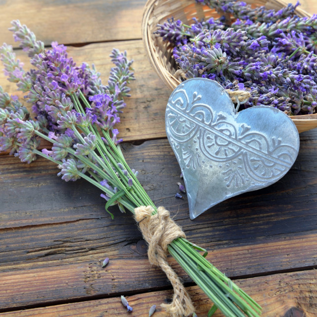 """""""decorative metal heart among flowers of lavender on wooden backg"""" stock image"""