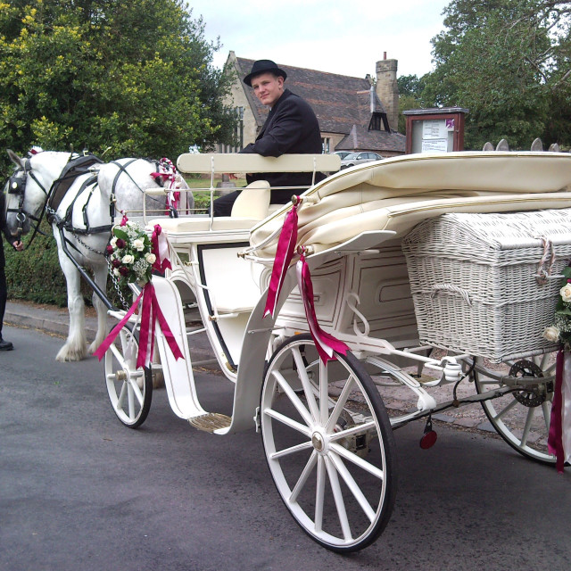 """""""Horse and Carriage Wedding Staffordshire"""" stock image"""