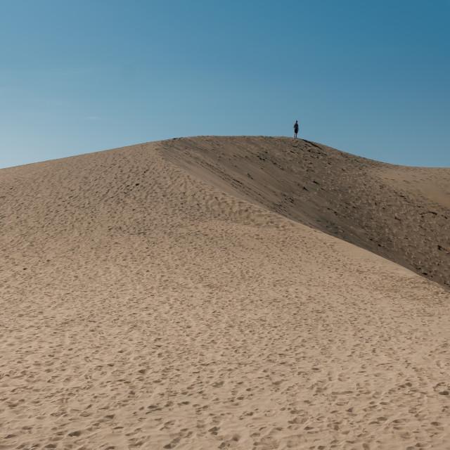 """Alone in the desert"" stock image"