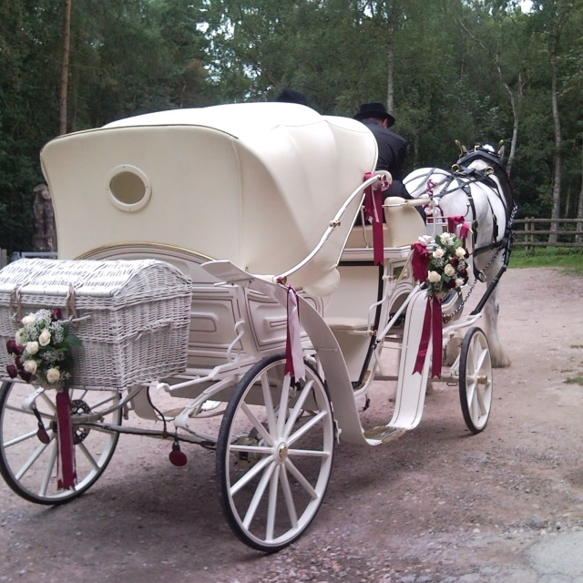 """Horse drawn wedding carriage"" stock image"