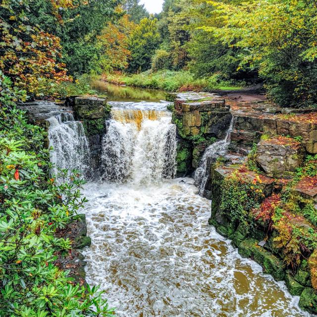 """Jesmond Dene waterfall"" stock image"