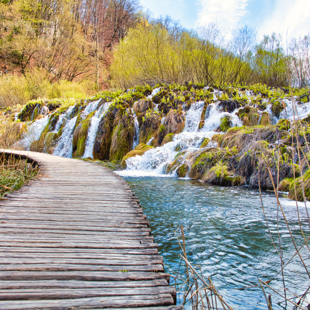 """""""Wooden Planked Walkway Through Plitvice Lakes National Park"""" stock image"""