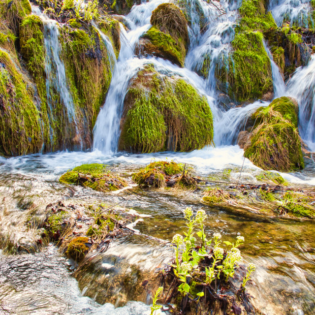 """Multiple Short Waterfalls at Plitvice Lakes National Park"" stock image"