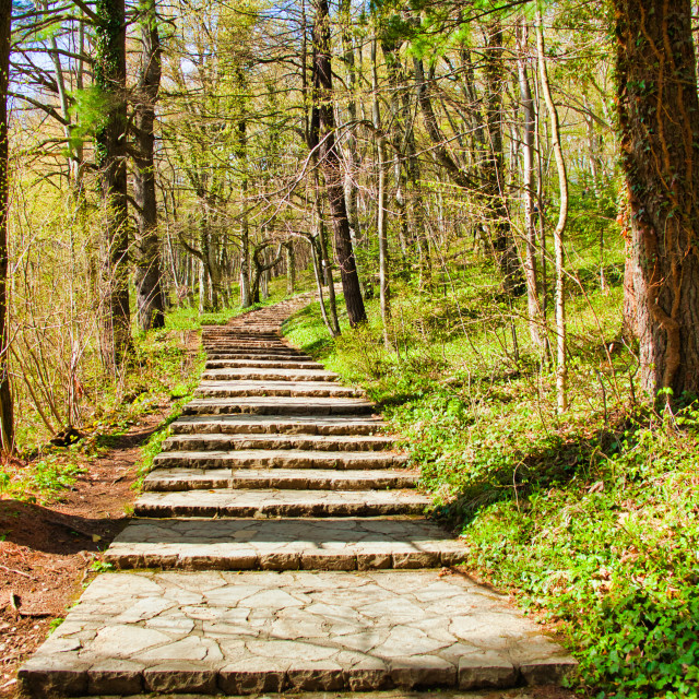 """""""Visitor Walkway at Plitvice Lakes National Park"""" stock image"""