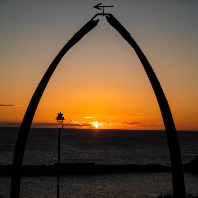 """""""Whalebone Sunrise"""" stock image"""