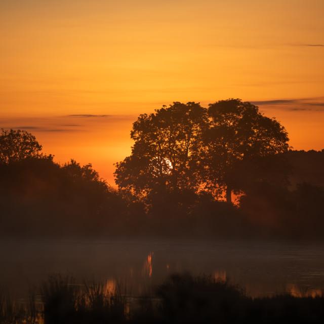 """Sunrise over East Lagoon"" stock image"