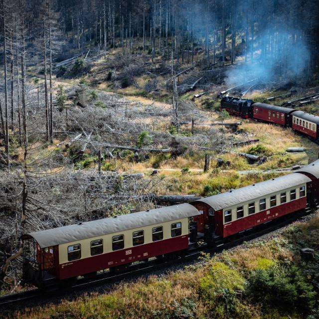 """""""Die Brockenbahn im Harz - Reise durch das Waldsterben"""" stock image"""
