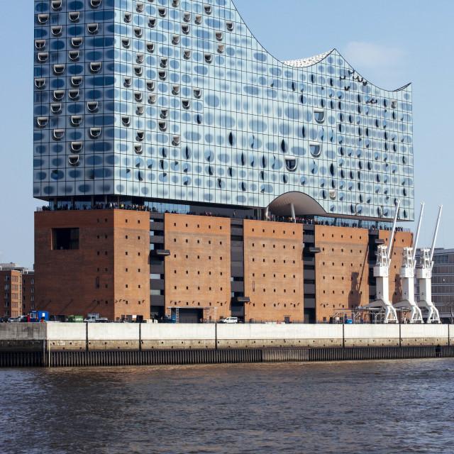 """""""Elbphilharmonie im Hamburger Hafen an der Elbe"""" stock image"""
