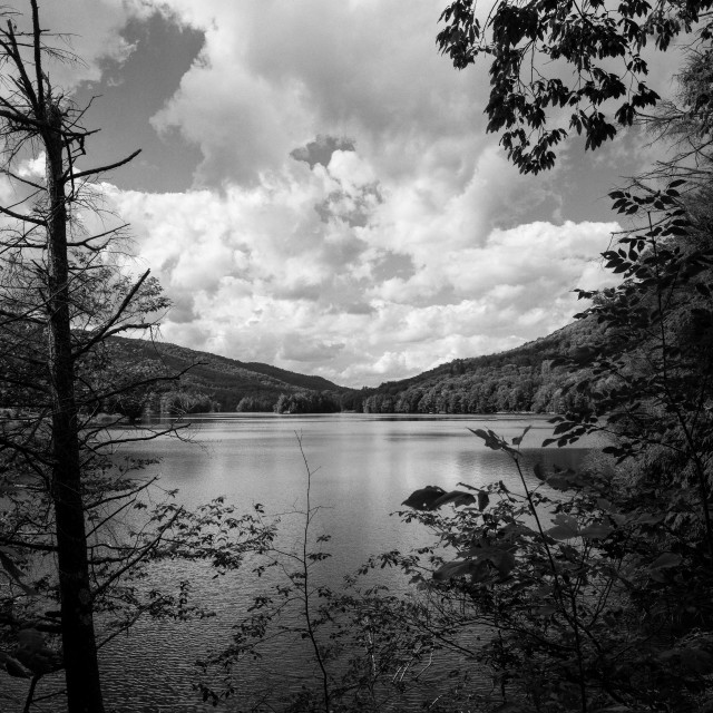 """Woodward Reservoir"" stock image"