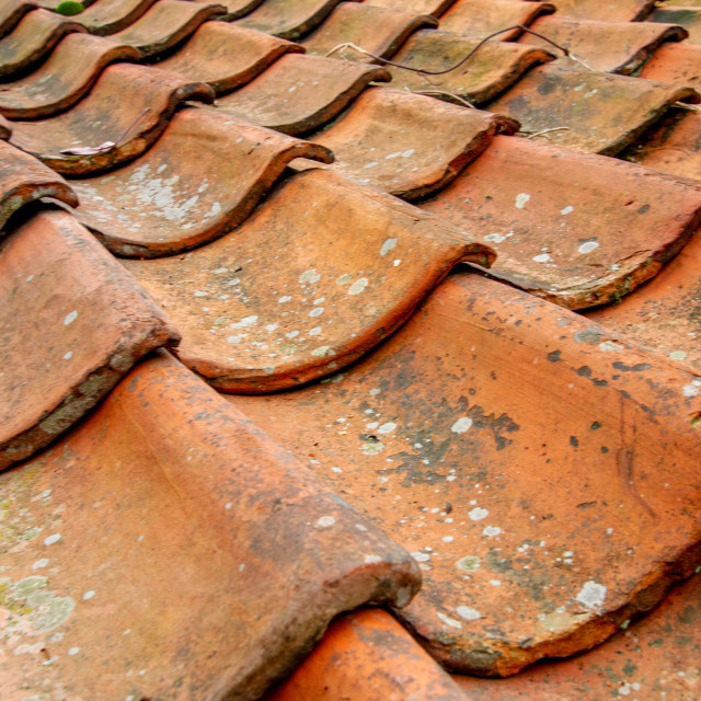 """Robin Hoods Bay, Pantile Roof."" stock image"