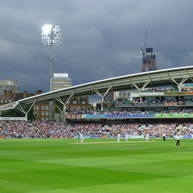 """Cricket at the Oval London"" stock image"