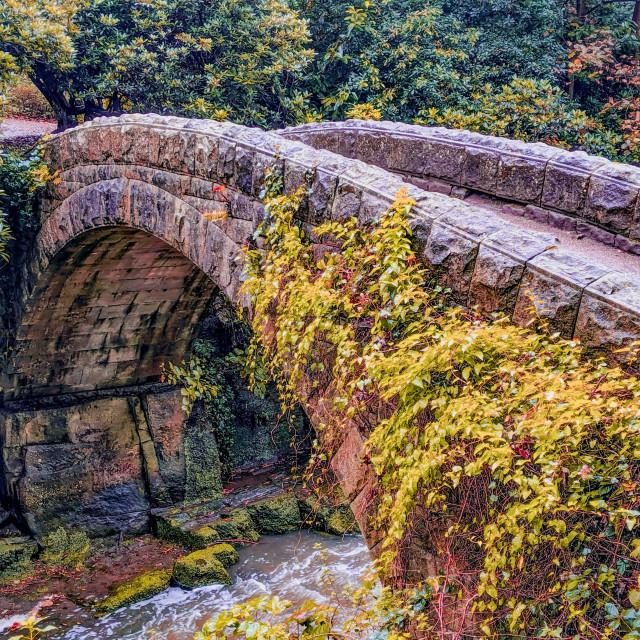"""""""Jesmond dene footbridge"""" stock image"""