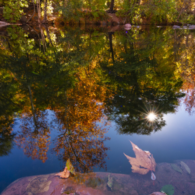 """""""Fall color reflection"""" stock image"""