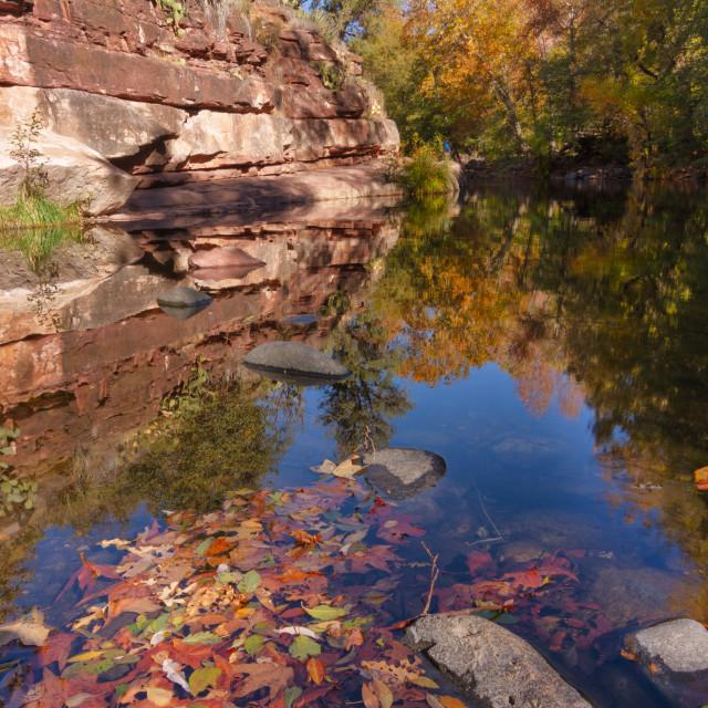 """Autumn reflections"" stock image"