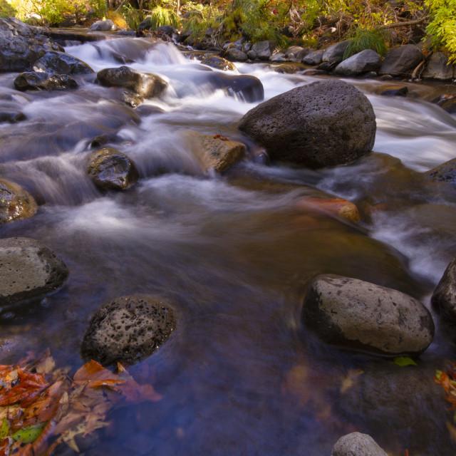 """Cascades of a river through fall colors"" stock image"