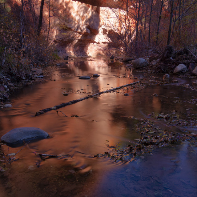 """""""Canyon reflection in river"""" stock image"""