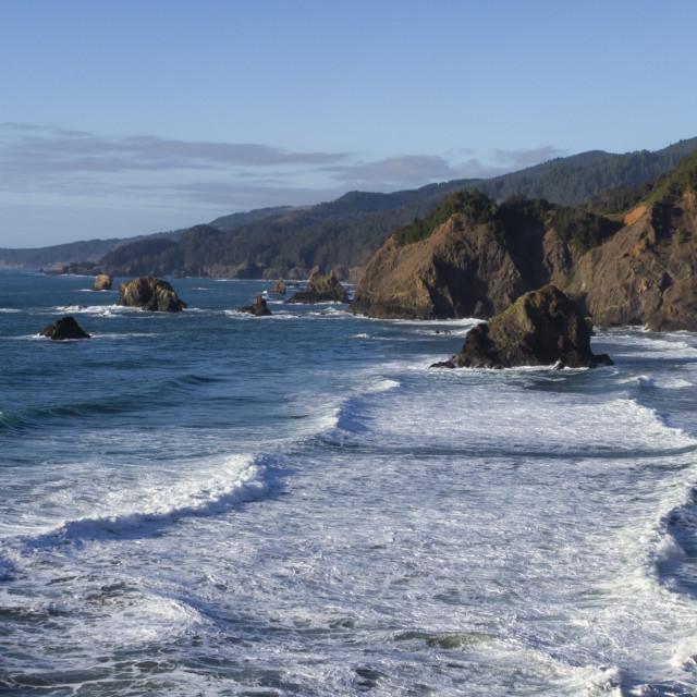 """Oregon coastline"" stock image"