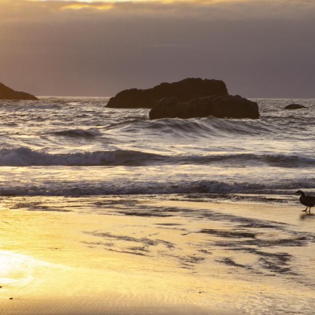 """""""Sunset along the coast"""" stock image"""