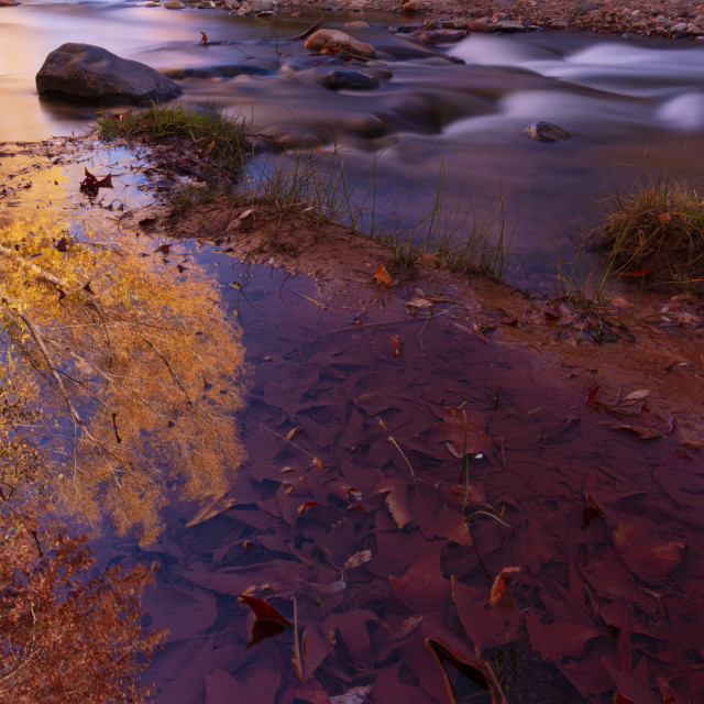 """""""Fall colors reflecting in a creek"""" stock image"""