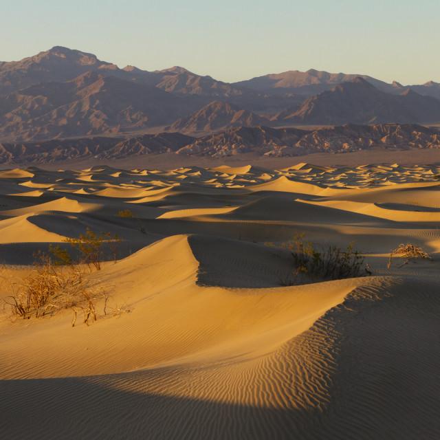 """Sand dunes at Sunset"" stock image"