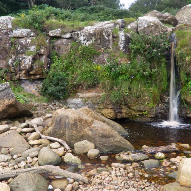 """""""Hayburn Wyke Waterfall"""" stock image"""