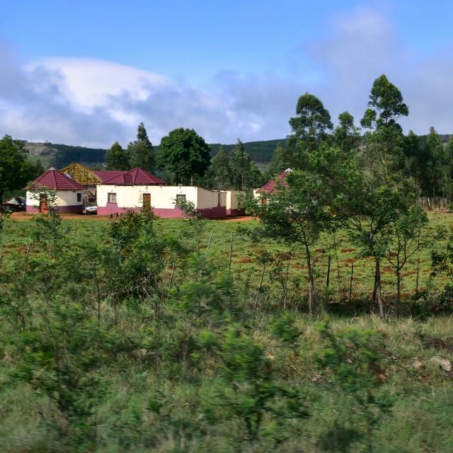 """""""Swazi countryside"""" stock image"""