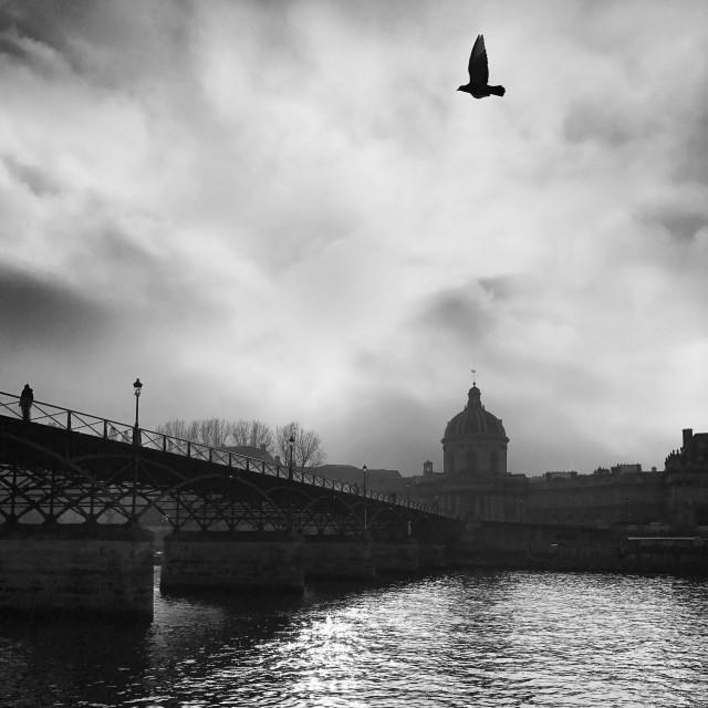"""""""Pont des Arts, Paris - France"""" stock image"""