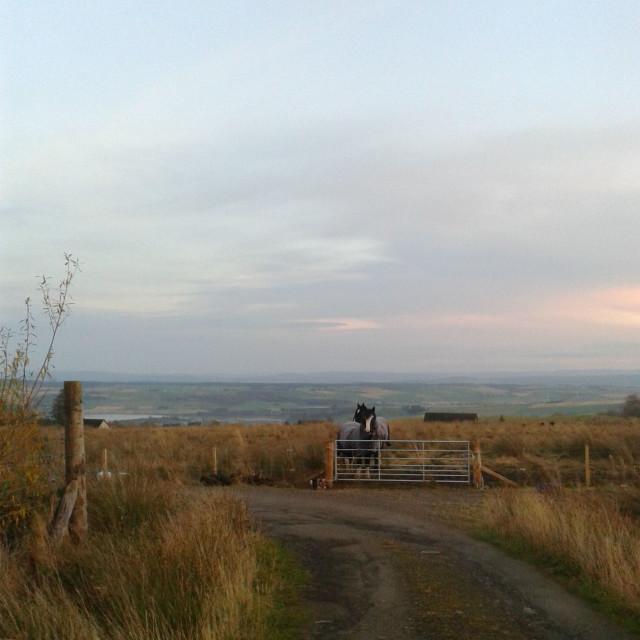 """Ben & Solomon Highlands of Scotland 2014"" stock image"