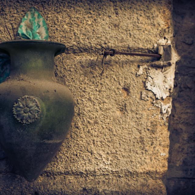 """A vase"" stock image"