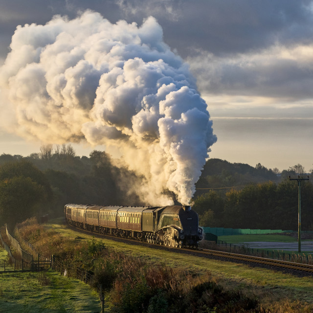 """""""LNER A4 6009"""" stock image"""