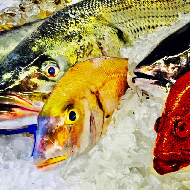 """Fishmarket"" stock image"