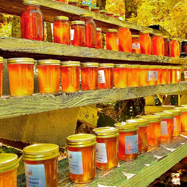 """Roadside honey jars"" stock image"