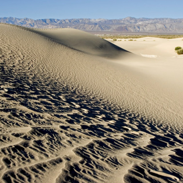 """""""Ripples in the sand dune"""" stock image"""